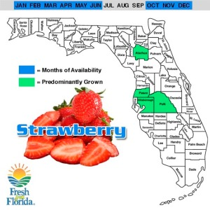 When and where Florida strawberries are grown