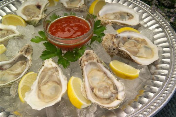 Delicious Florida Oysters