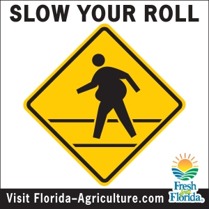 3465-12x12 Slow Your Roll Tollbooth sign